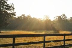 ap-farm-facility-0005